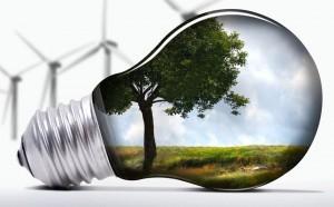 servicios sostenibles Calfri
