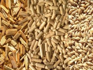 biomasa y pellets para calefacción