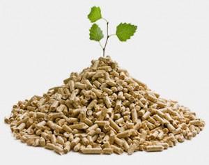biomasa pellets